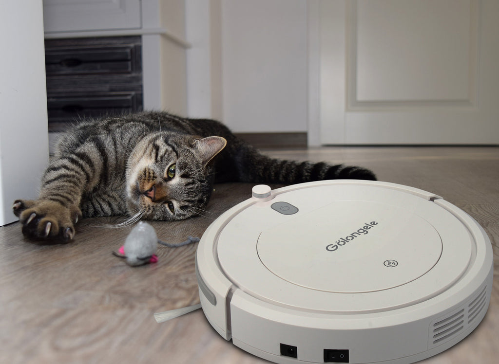 Trouble with your pet hair cleaning? All you need just a robot vacuum cleaner!