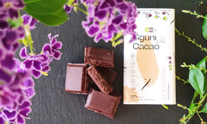 Chocolate with Cinnamon with LABU dried Plum and Apple Puree pieces. Sweetened with dates. 60 g. Suitable for vegans