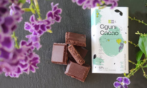 Chocolate with Mint with LABU dried Blackcurrant and Apple puree pieces. Sweetened with dates. 30 g. Suitable for vegans