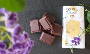 Chocolate with Vanilla and LABU dried Raspberry and Apple puree pieces, sweetened with dates. 60 g. Suitable for vegans.