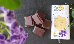 Chocolate with Vanilla, sweetened with dates. 60 g. Suitable for vegans.