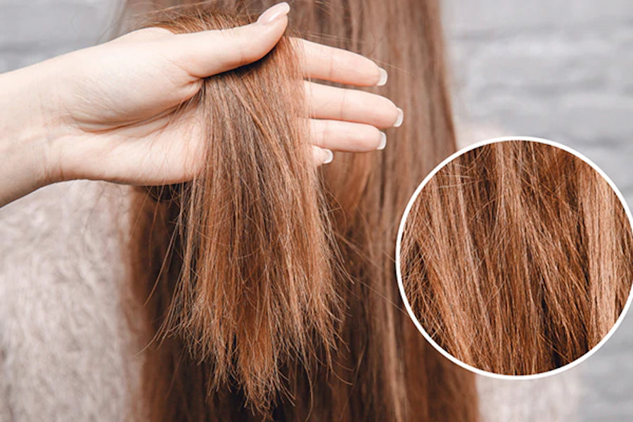 Split Ends - What Are They ?
