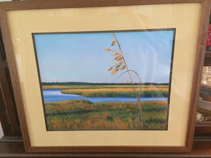 """Sea Oats"" oil pastels on board - framed - by Nancy Carter"