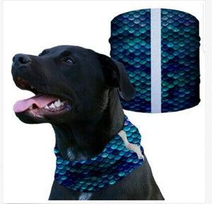 """MERMAID SCALES"" Reflective Dog Shield"