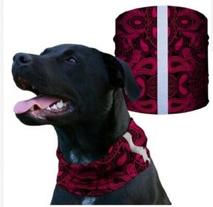 """RED PAISLEY"" Reflective Dog Shield"