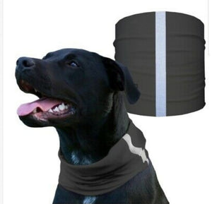 """TACTICAL GREY"" Reflective Dog Shield"