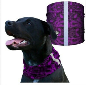"""PURPLE PAISLEY"" Reflective Dog Shield"
