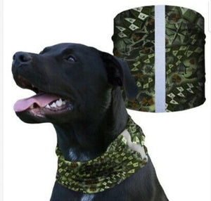"""""STEALTH TECH VERDUOUS"" Reflective Dog Shield"
