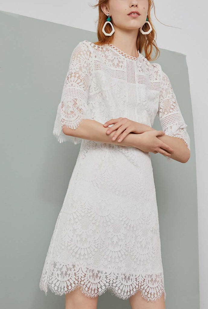 Solid Color Long Sleeve Lace Midi Dress