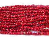 Red Bamboo Coral Chip Beads