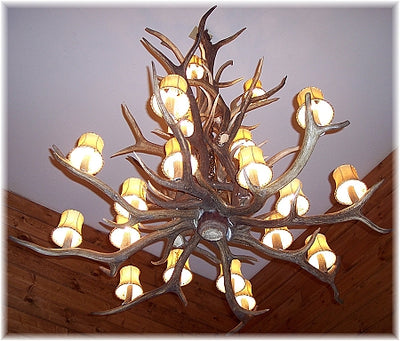 20 Antler, 22 Light Trophy Elk Antler Cascading Chandelier