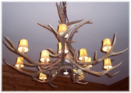 10 Antler, 14 Light Elk Antler Chandelier with downlight
