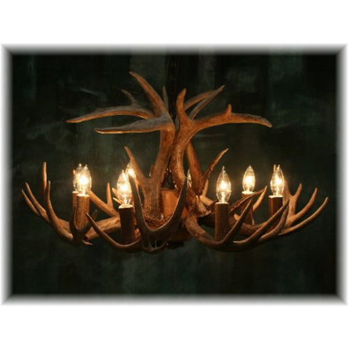 12 Antler, 8 Light Whitetail Antler Chandelier