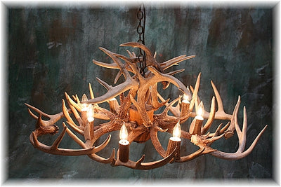 16 Antler, 8 Light Oblong Whitetail Chandelier
