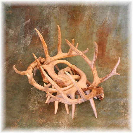 Whitetail Antler Log Holder
