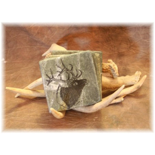Whitetail Shed Antler Coaster Set