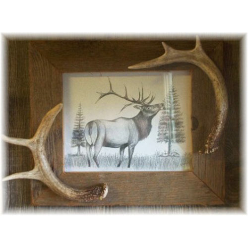"8x10"" Rustic Barnboard Picture Frame with Antler Accent"