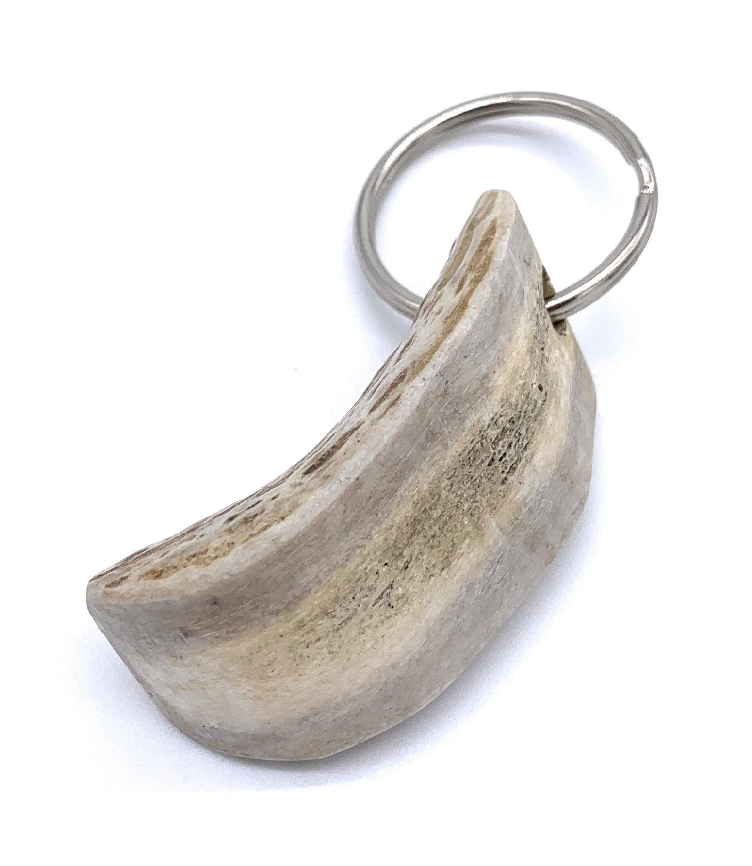 Polished Antler Keychains