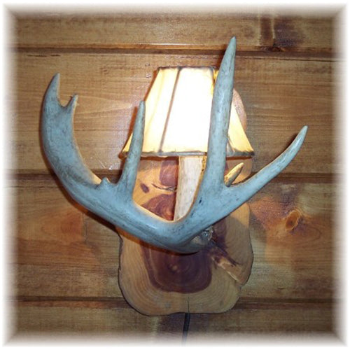 Whitetail Antler Vanity Sconce
