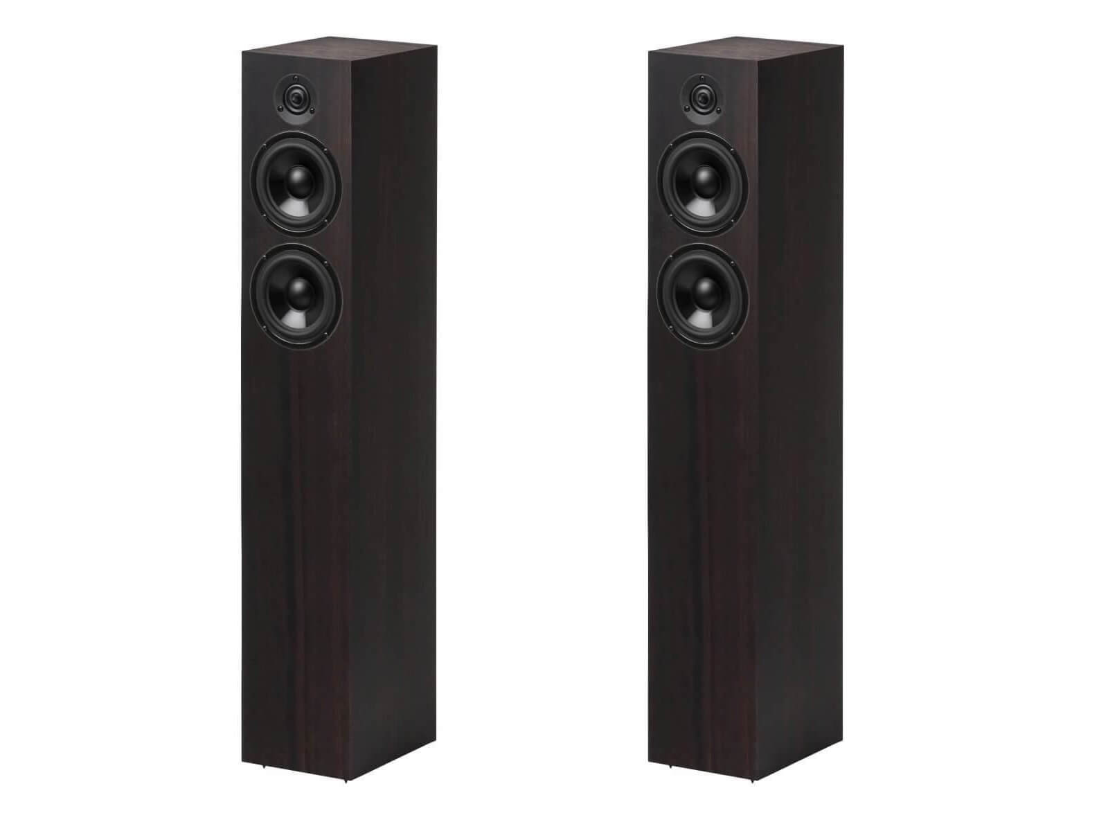 Pro-Ject Speaker Box 10 DS2 - Floorstanding Speakers - Eucalyptus