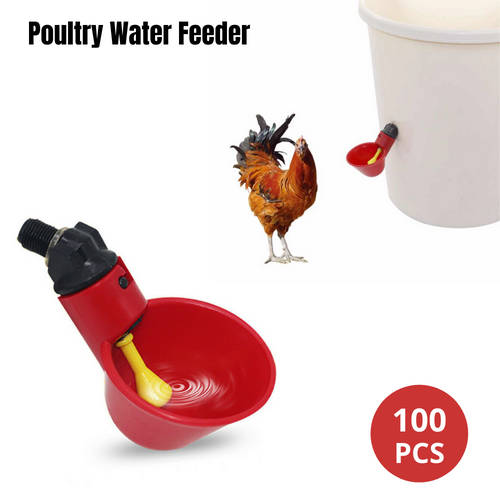 100pcs Automatic Poultry Water Feeder Chicken
