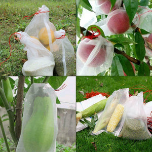 50 Fruit Net Bags Agriculture Garden Vegetable Protection Mesh Insect Proof