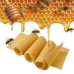 Honeycomb Foundation Sheet Wax Frames Beekeeping Honey Bee Hive Equipment 30PCS