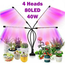 Load image into Gallery viewer, 4 Head 40W 80 LED Grow Light Growing Veg Flower Indoor Clip Plant Lamp