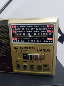 AM/FM/SW 3Band World Radio