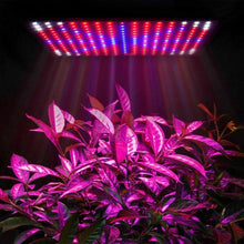 Load image into Gallery viewer, 225LED 2000W Grow Light Hydroponic Kits Growing Plant Indoor Lamp
