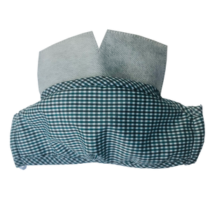 Carbon Filter Face Mask in Blue Gingham Plaid with Activated Carbon PM 2.5 Filter Insert