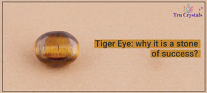 Tiger Eye: why it is a stone of success?