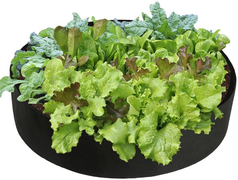 Plant - Breathable Gardening Bed