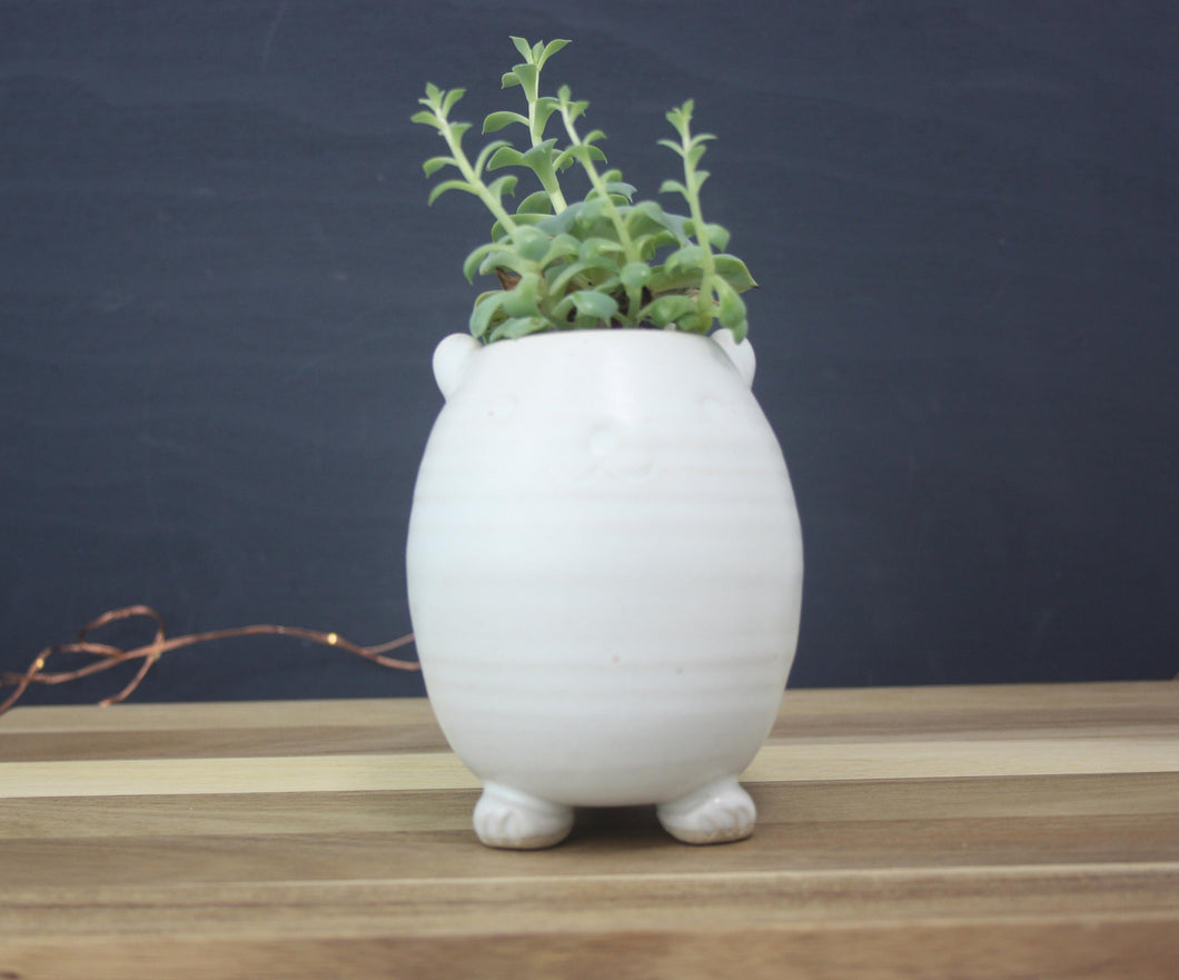 Small Hamster Pottery Flower Pot Animal Indoor Planter
