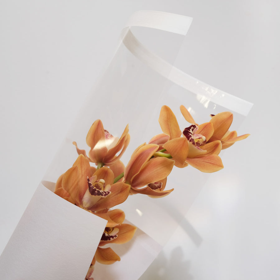 Half Clear Waterproof Single Flower Wrapping Paper