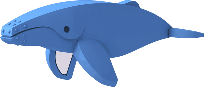 HALFTOYS HUMPBACK WHALE - JollyPlaystore