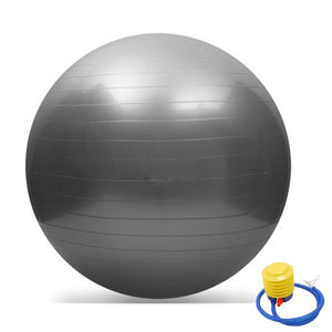 65cm Exercise GYM Yoga Swiss Ball Fitness