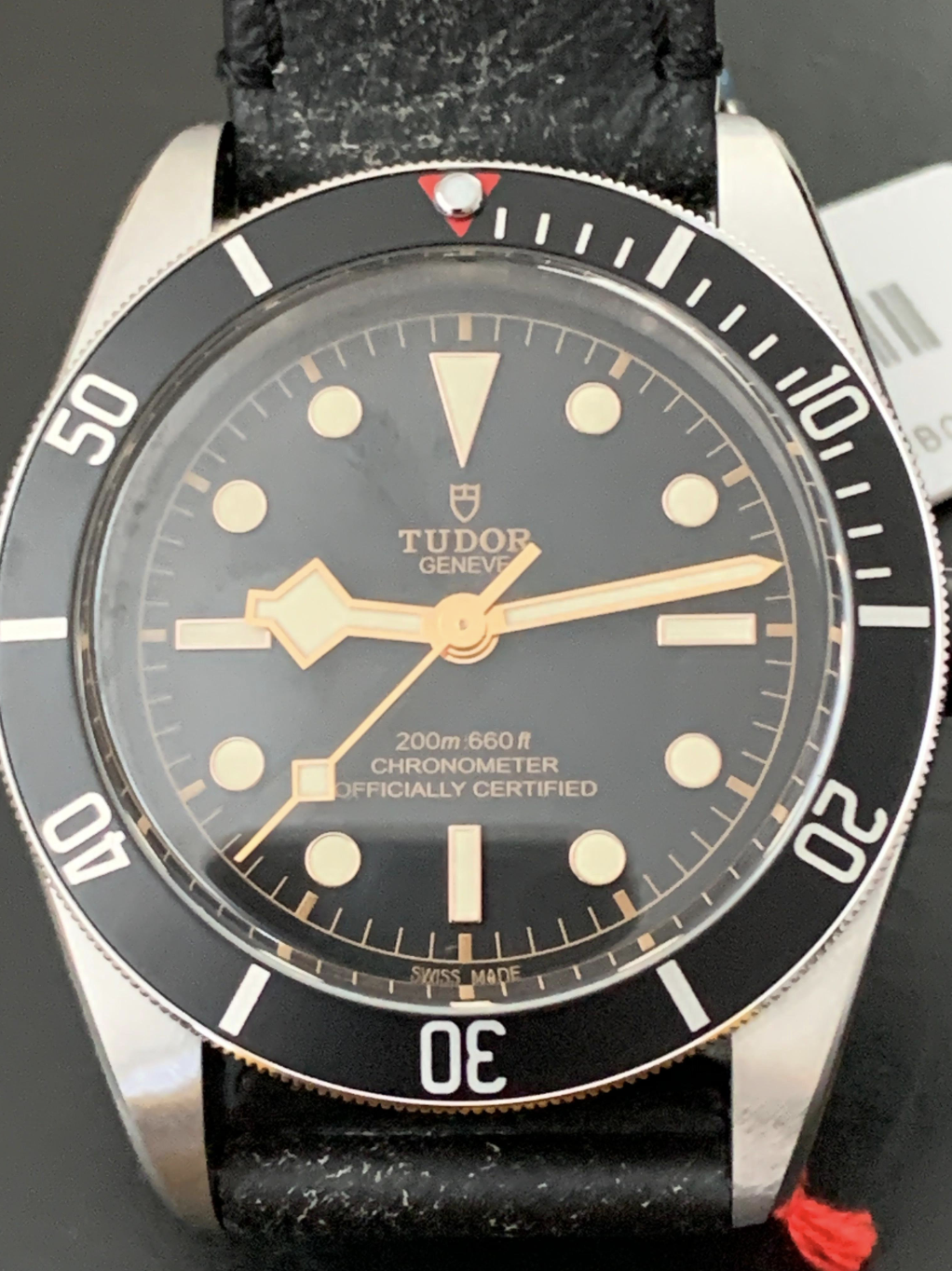 Tudor Black Bay Steel 41mm Leather strap 79230N