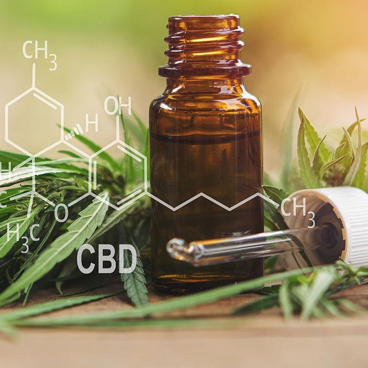 Why You Should Make CBD Oil a Part of Your Daily Routine | Grateful Heart Botanicals