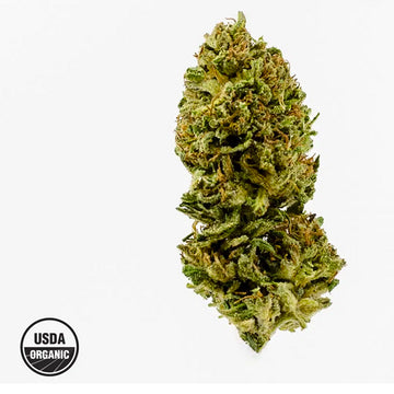Lifter - Organic Hemp Flower
