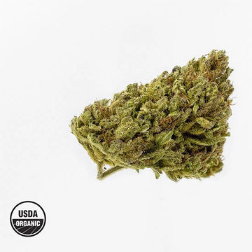Oregon Guava - Organic Hemp Flower
