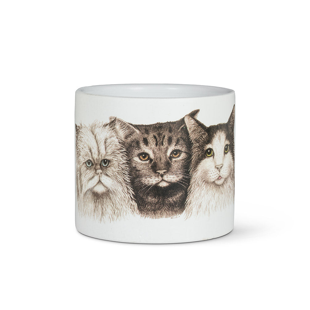 Small Cat Trio Planter