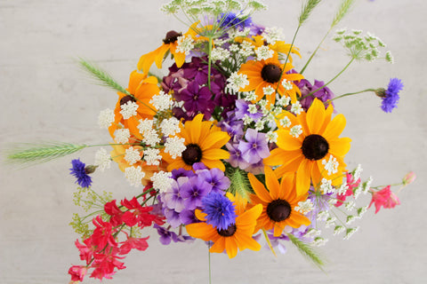 Close up flat lay image of flowers on a table. The flowers are yellow, white, pink, blue and purple and include Larkspur, Rudbeckia, Ammi, Cornflower, Phlox and grasses.