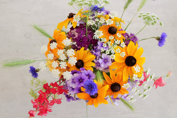 A close up, flat lay image showing a flower arrangement - includes pink Larkspur, white Ammi, yellow Rudbeckia, purple Phlox and blue Cornflowers.