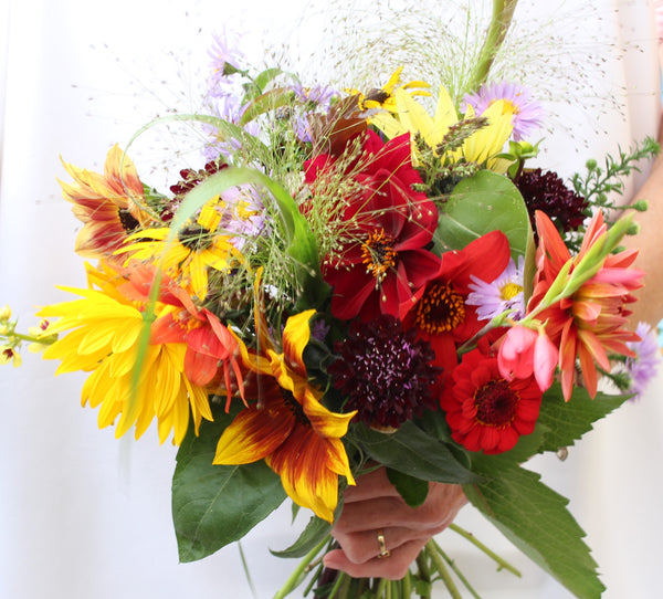 Close up photograph of a bouquet of flowers including sunflowers, rudbeckias, dhalias, daisies and grasses.