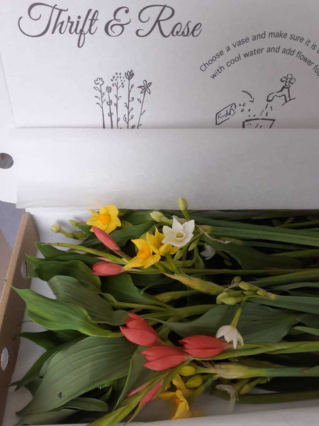 A close up photograph of flowers in letterbox packaging.