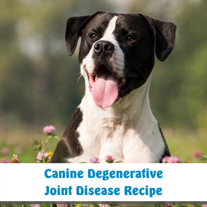 Canine  Degenerative Joint Disease Recipe