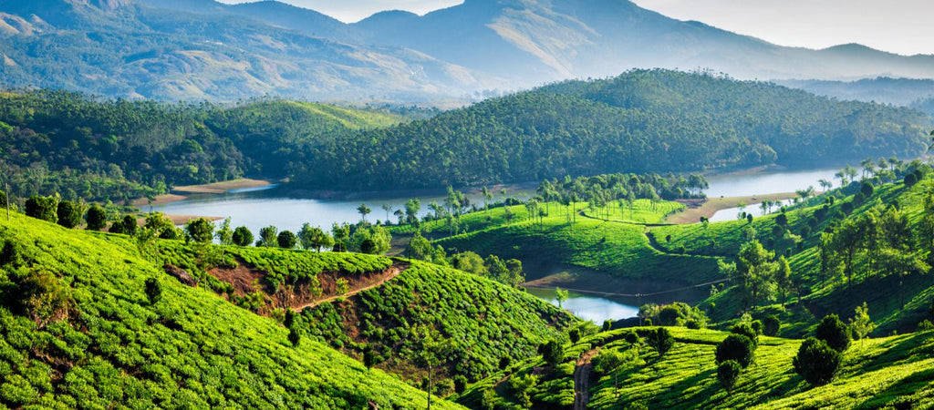 7 Best Travel Destinations In India That Won't Cost You Your Salary! – Awesome Men