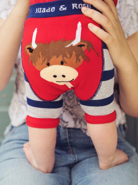 Highland Cow Short