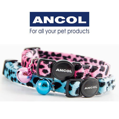 Ancol Soft Velvet Leopard Cat Collar Safety Buckle in Turquoise or Pink